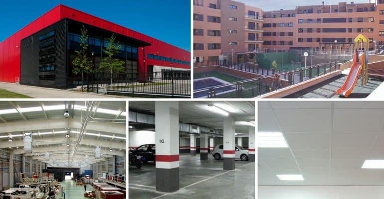 Control de roedores en zonas comunes edificios