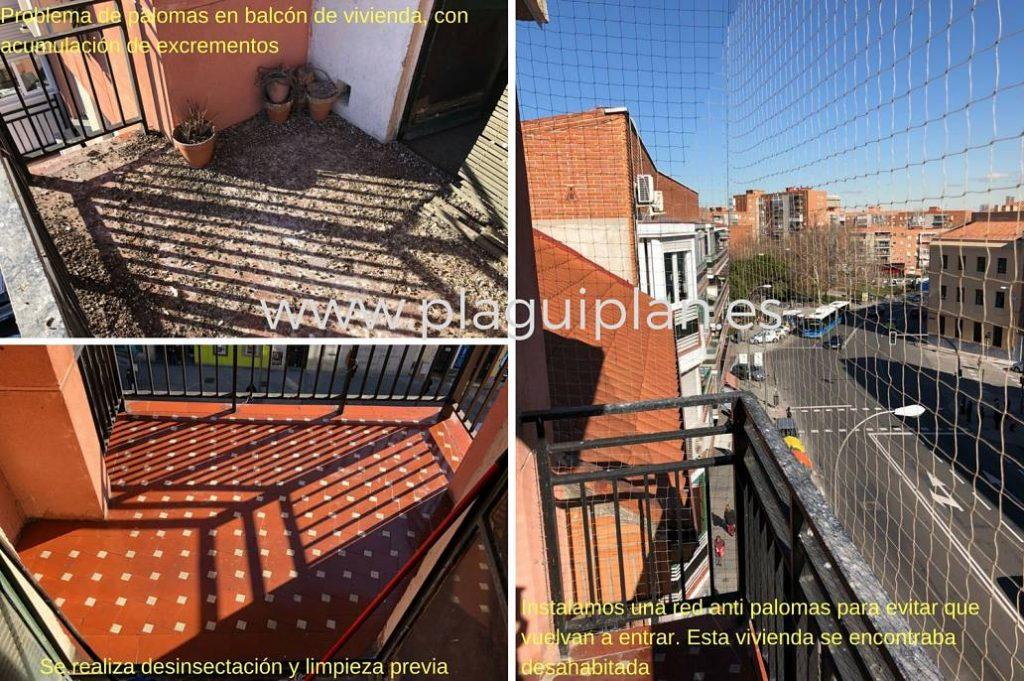 Limpieza y red anti palomas en terraza