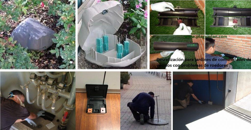 Control de roedores en zonas comunes de edificaciones