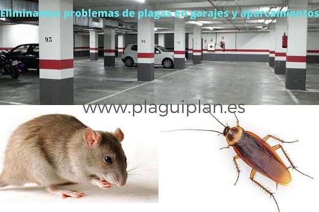 Control de plagas Madrid en garajes y aparcamientos