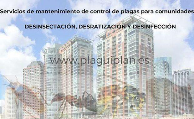Importancia del control regular de plagas para áreas residenciales