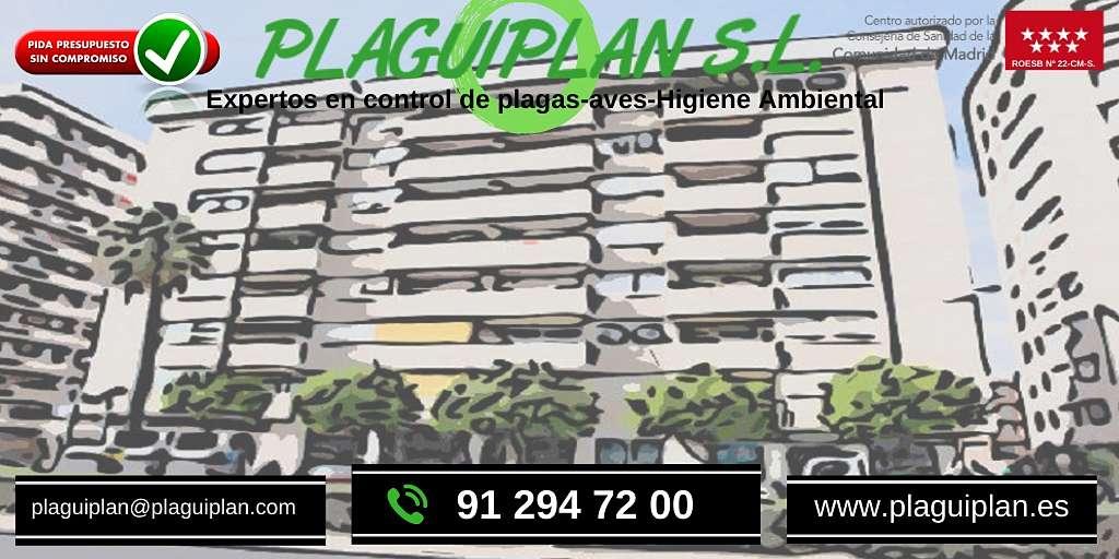 control-plagas-administración-fincas