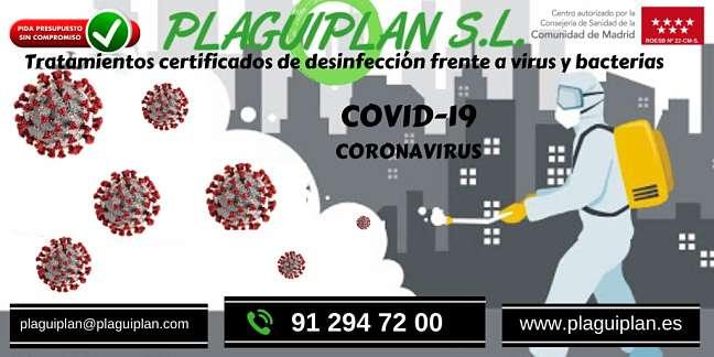 Desinfección de colegios ante el coronavirus