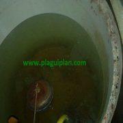 Depósito de agua de consumo humano sucio